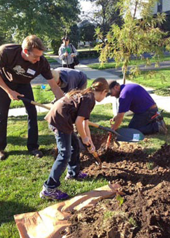 Participants in the Indiana Community Tree Steward Program become advocates for urban forests. (Submitted photo)