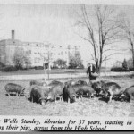 In 1918, longtime librarian Nel- lie Wells Stanley was photographed feeding pigs across from the high school.