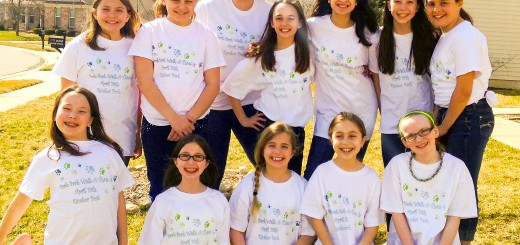 Front row from left: Girl Scout Troop 1019 members are Nicole Adams, Natalee Brendel, Audrey Shea, Katherine Spadaro and Larissa Krakora; back row: Taylor Pickard, Sarah McDonald, Kennedy Greenwalt, Grace Mayen, Sophie Porter and Chloe Johns. (Submitted photo)
