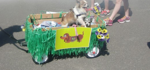 Rescued pups, cared for with funds raised by DJ's, participated in the Mutt Strut in April. (Submitted photo)