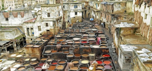 Tannery in Fes el Bali, Morocco (Photo by Don Knebel)