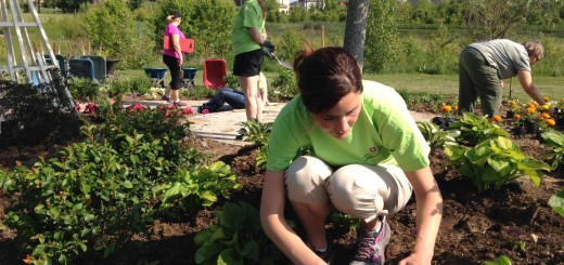 Stacey Pomeroy, RN, Clinical Coordinator at IU Health North Hospital, plants flowers in the ABC Children's Garden during the IU Health Day of Service