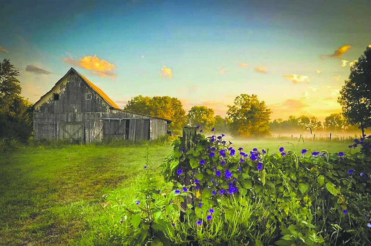 Sally Wolfe's photo of a barn and field won first place at the inaugural photo contest. (Submitted photo)