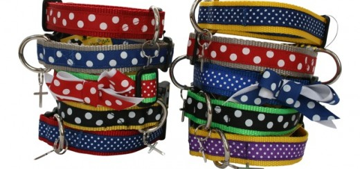 A Polka Dot Life pet collars are all handmade in Indiana and come complete with their own blessing. (Submitted photo)