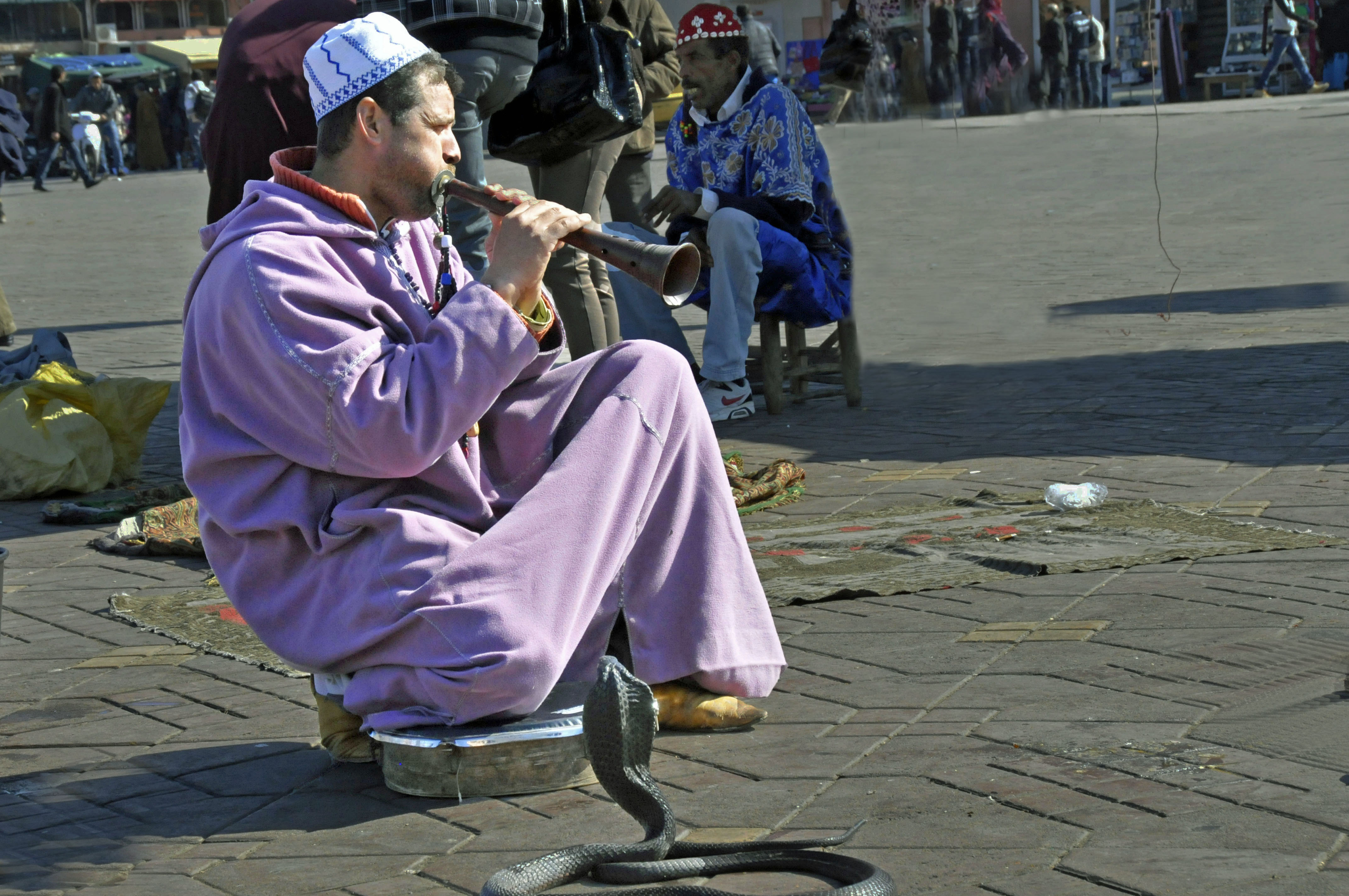 Snake Charmer on the Square in Marrakesh, Morocco. (Photo by Don Knebel)