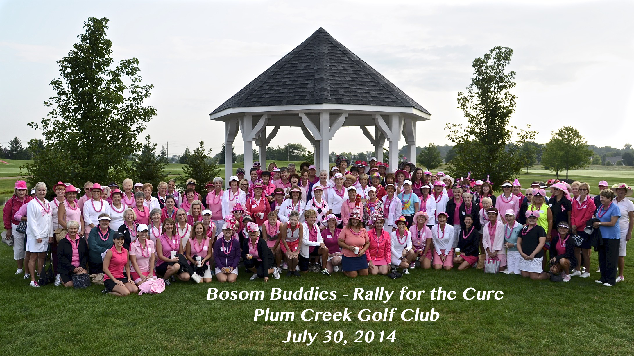 Bosom Buddies 2014 Group Photo