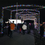Colorful arches line the road next to the main stage and Christmas Tree as the crowd gathers for the lighting ceremony.