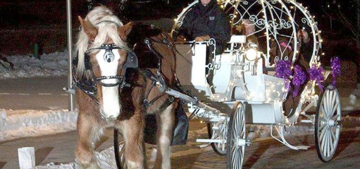 Princess style horse-drawn carriage rides from the Breezy Lane Carriage Company of Kokomo. (Submitted photo)