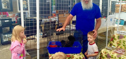 Dale Redwine, owner of Redwine Farms, teaches kids about a chicken while selling his produce.