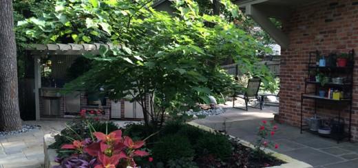 The finished backyard area.