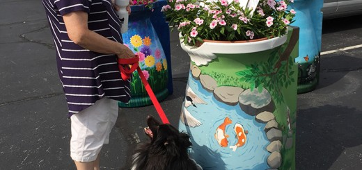 Carla Hulic looks at a rain barrel with her dog, Little Man. (Photos by Anna Skinner)