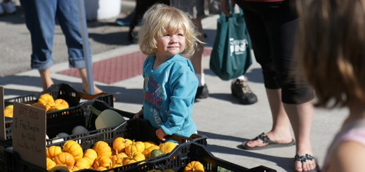 Many kids, including Penelope Morton, stop to look at the mini­pumpkins August 22 during the Kid's Day Farmer's Market. (Photos by Summer Pratt)