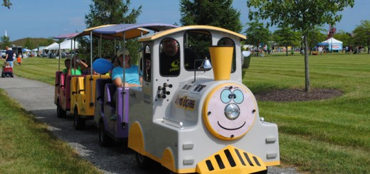 A train circled around continuously at the party carrying small children.