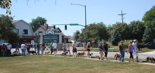 Pets and their owners walk in the Parade of Paws around the Nickel Plate District Amphitheatre in Fishers. (Submitted photo)
