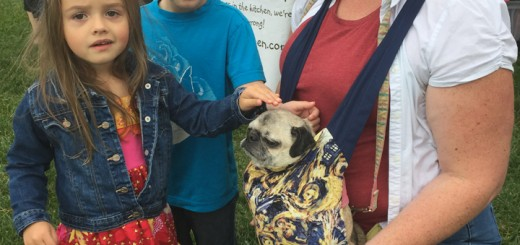 Lauren and Evan Smith pet Jessica Sanders' pug, Mia. Sanders represented Pugs in the Kitchen, a business selling homemade dog treats.