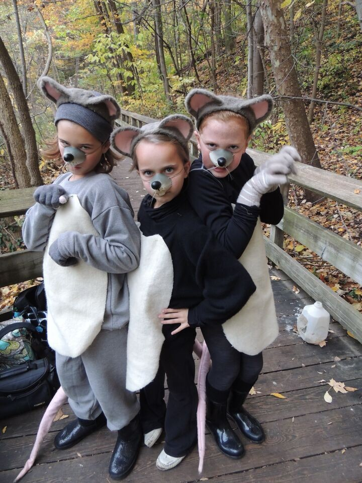 Dressed as mice, Emily Carlisle, Emma Rogers, and Lucy Caltrider enjoy a Hauntless Halloween. (Submitted photo)