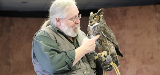 Mark Booth shows an owl during the 2015 Birds of Prey presentation. (Photo by Ann Marie Shambaugh)