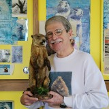 Dr. Neil Lipken displays a stuffed groundhog he keeps in his Carmel office. (Photo by Feel Good Now)