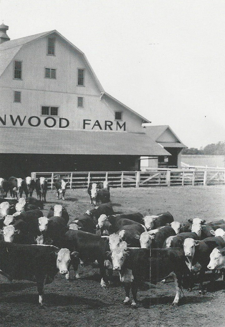 Lynnwood Farm had a few barns on the property, like the one pictured, here. Some have been preserved, such as the one used by Northview Church. (Photo courtesy of Agriculture Communications, Purdue University)