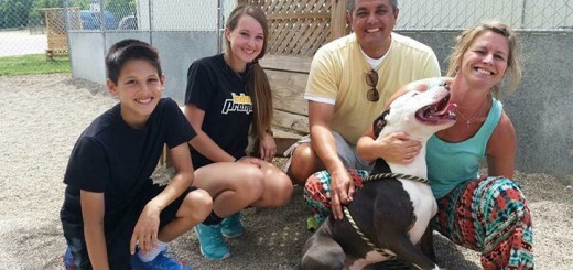 From left, Zach, Courtney, Jerry and Richell Vaughn are the owners of a pit bull named Sir Jeffrey, who had been available for adoption from the Humane Society for Hamilton County for 18 months. (submitted photo)