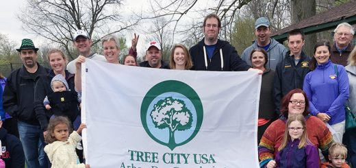On April 23, 500 tree seedlings of five different species were given away at Asa Bales Park. The species included bur oak, Norway spruce, flowering dogwood, Ohio buckeye and river birch. Those who waited in line held up a banner that celebrated Westfield's ninth year as a tree city. (Photos by Anna Skinner)