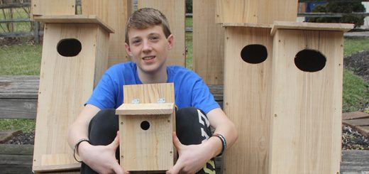 Corey Varnau made boxes for ducks and prothonotary warblers for his Eagle Scout project. (Submitted photo)