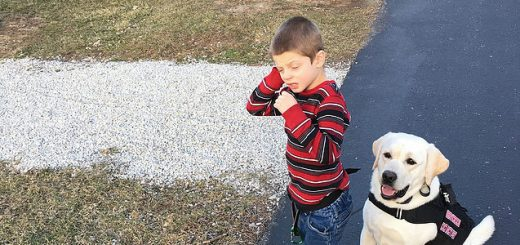 Last year, Friends Helping Friends, inc. raised enough money to allow TJ Durbin to get a service dog, Sunny. (Submitted photo)