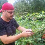 Andrew Klein examines a cluster of blooming blackberries in his garden at Geist Nursery. (Photos by Sam Elliott)