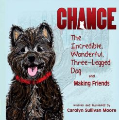'Chance, the Wonderful, Incredible Three-Legged Dog and Making Friends' is now available. (Submitted photo)