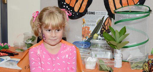 Mia Taliaferro, 6, learns about caterpillars.