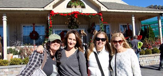 Mary Bohn (Westfield), Jenn Hershberger (Carmel), Stacia Denkmann (Carmel) and Cathy Loeser (Westfield) said they love shopping for the holidays at Allisonville Nursery in Fishers. (Photos by Amy Pauszek)