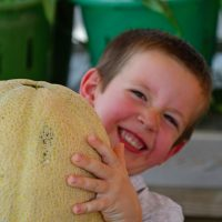 Conor Laskowski of Zionsville picks out a melon as big as his head. (Photo by Dawn Pearson)