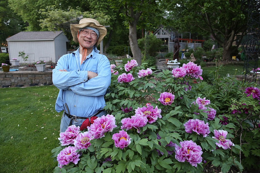 Carmel Gardener Believes His Collection Of Tree Peonies May Be