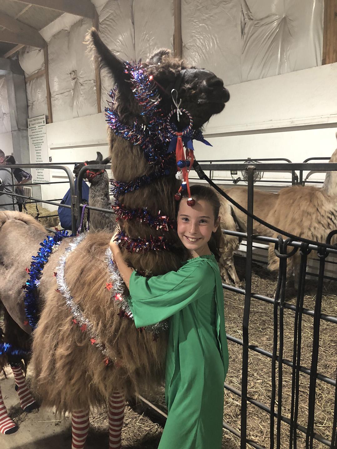 Snaphshot: 4-H Fair features llama costume contest | Current