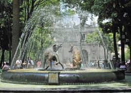 Column:History of Coyoacán:Honoring Coyotes