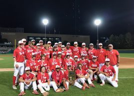 Young Fishers baseball team falls in state championship