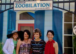 Where's Amy attends Zoobilation